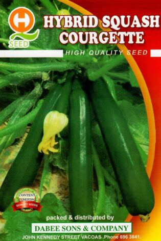 Courgette 5 seeds